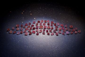 力拓阿盖尔极品粉钻、红钻、蓝钻闪耀安特卫普